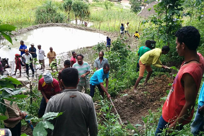 Permaculture Timor-Leste